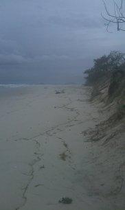 Near Gold Coast, AU