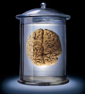 What my brain in a jar would look like had it been removed